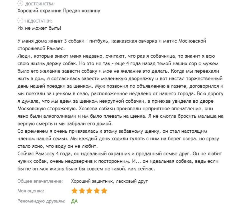 Национальная порода России - Московская сторожевая овчарка