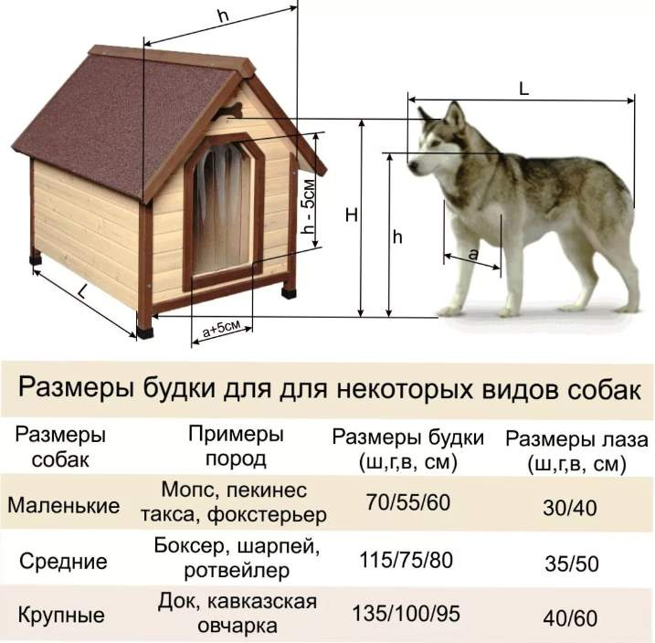 соотношение размера будки к собаке