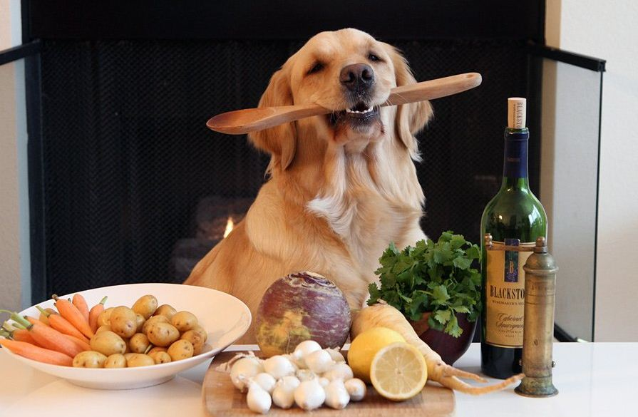 каши для собаки