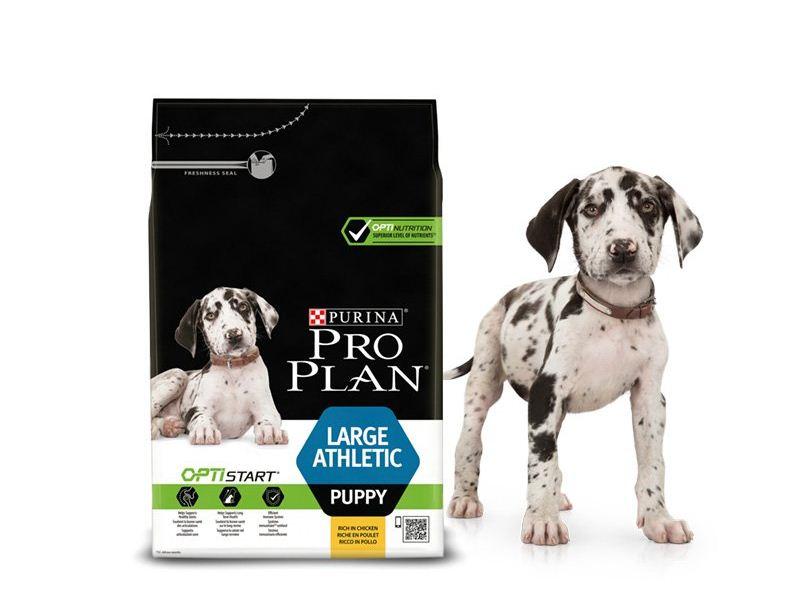 Pro Plan для щенков